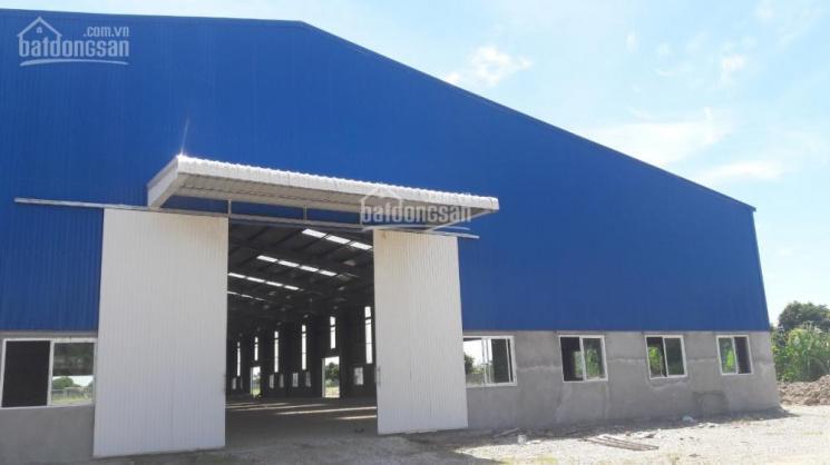 Cho thuê xưởng mới đẹp 2500m2, 4200m2 và 8400m2 huyện An Dương LH 0901568123