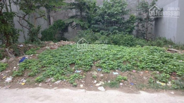 Bán nhà khu biệt thự HXH Dương Quảng Hàm, GV, DT: 4,2m (4,8m) x 13m. Giá 4,7 tỷ, LH 0906413211 Hảo