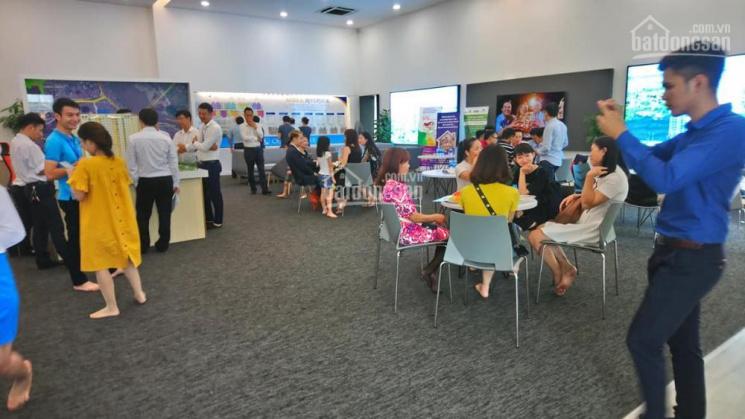 Amber Riverside-622 Minh Khai hút khách vì thiết kế vượt trội và mật độ thấp hơn Time City