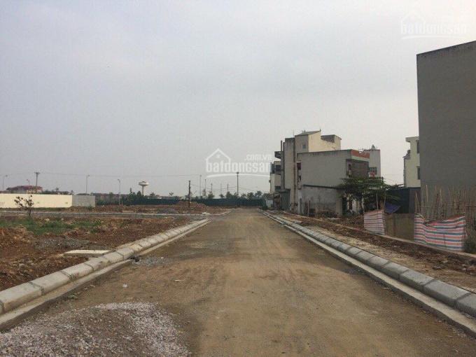Chính chủ cần bán 50m2 đất dịch vụ phường Phú Lương, Quận Hà Đông, Hà Nội. Giá 2,9 tỷ - 3 tỷ ảnh 0