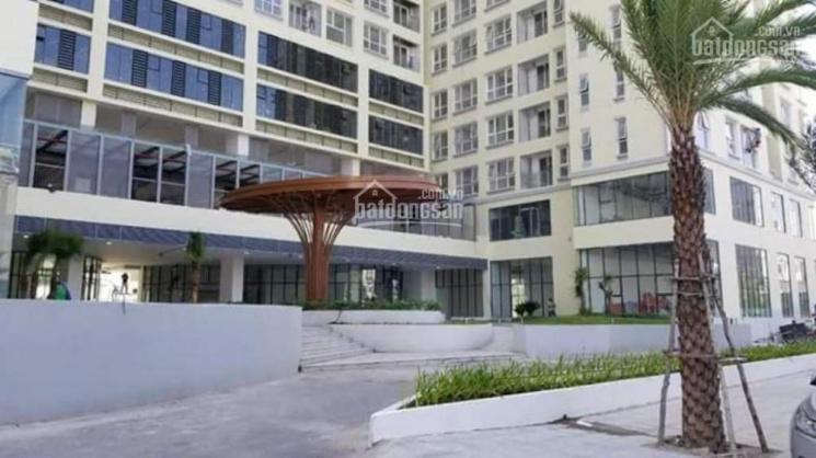 Cần bán gấp lại căn hộ The Golden Star giá tốt 2PN chỉ 2.450 tỷ, LH 0924046746 ảnh 0