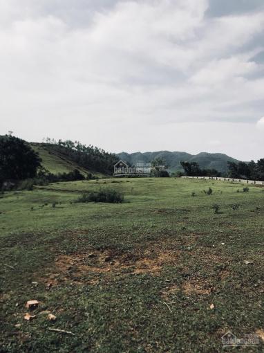Bán gấp 1ha (10,000m) đất làm nhà xưởng tại Tiến Xuân, Thạch Thất, chỉ cách Đại lộ Thăng Long 1.5km
