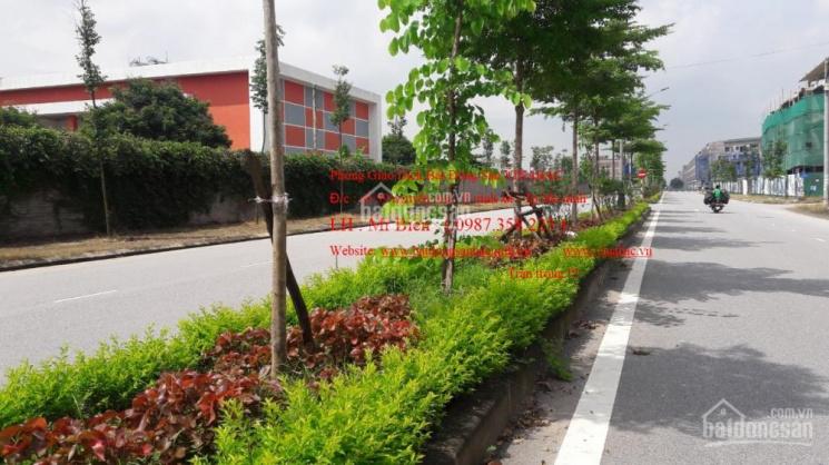 Bán đất mặt đường Bình Than - P Võ Cường - TP Bắc Ninh
