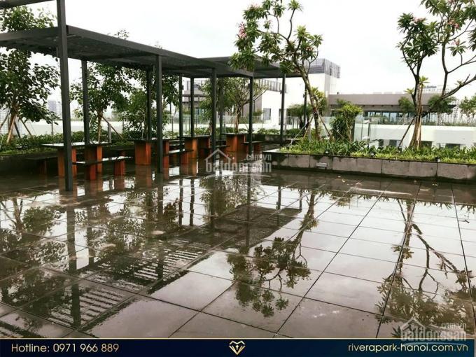 Đừng bỏ lỡ - Suất ngoại giao - Căn 02 tòa B - View trực tiếp bể bơi - Rivera Park, Thanh Xuân