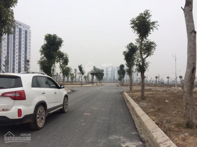 Tôi chính chủ cần bán cắt lỗ lô đất đường 17m KĐT Thanh Hà Cienco 5. LH 0979476234 ảnh 0
