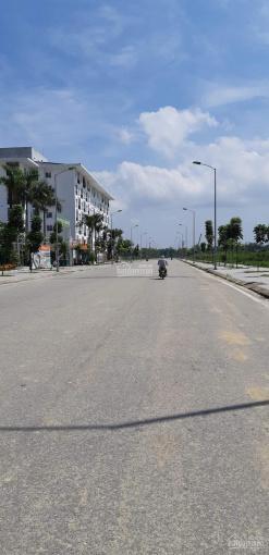 Chính chủ bán đất chợ Cống Mới, 9 Dương Khuê, KQH Xuân Phú, Huế, 114.8m2, giá 31.5 tỷ ảnh 0