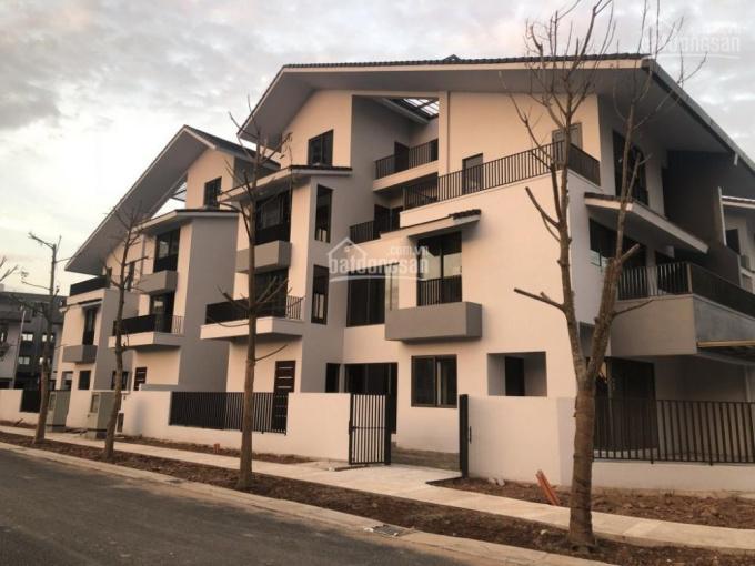 Bán biệt thự song lập Iris Home SD5 khu Gamuda, trả góp 36 tháng