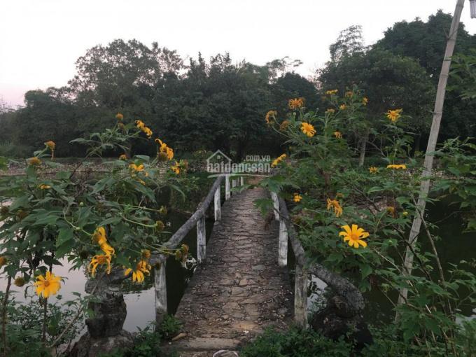 Bán DT 15,000m2 đất ở khuôn viên hoàn thiện, xã Vân Hòa, huyện Ba Vì, TP Hà Nội
