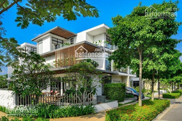 Nhà phố Him Lam, gần Lotte quận 7 5x18m giá 25 tr, 5x20m giá 35 tr, 7.5x20m giá 58 tr 0977771919 ảnh 0