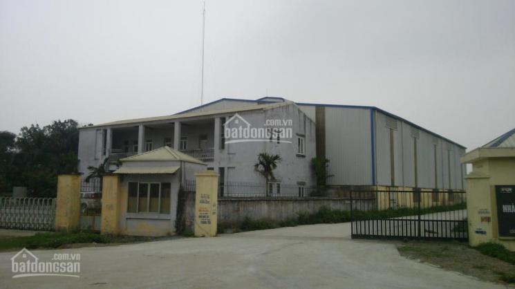 Công ty Hoàn Thiện cho thuê xưởng DT: 500m2, 1000m2, 1500m2, 2000m2, 3000m2 cụm CN Thường Tín, HN ảnh 0