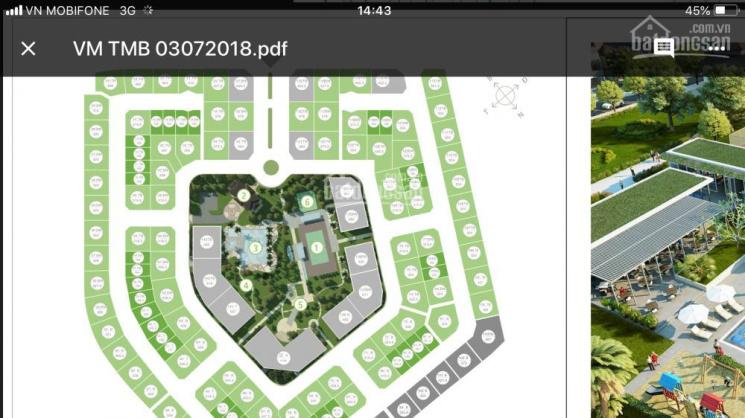 Bán chính chủ biệt thự Vườn Mai - Ecopark, số 113, lô góc, 351m2, hướng Tây Bắc, giá 42 triệu/m2