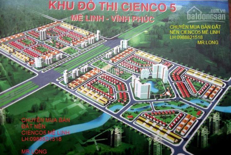 Bán đất nền biệt thự Cienco 5 huyện Mê Linh tự xây giá rẻ nhất 8tr/m2