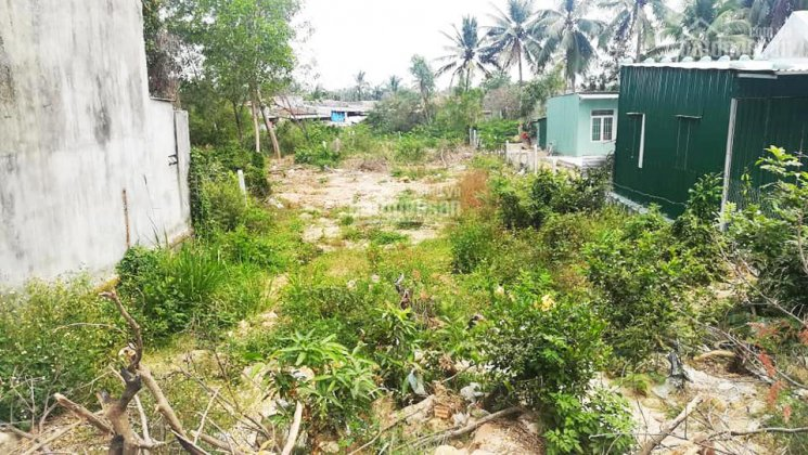 Bán đất khu dân cư Đất Lành, DT 655m2, ngang 10m, giá 2.5 tỷ. LH 0989 879 364