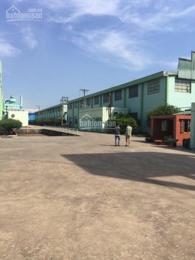 0945.825.408 bán kho xưởng trong KCN Hạnh Phúc (Long An). DT 9.000m2, giá thương lượng