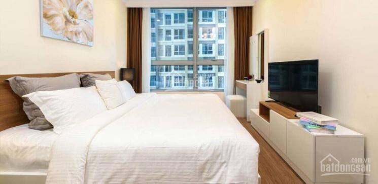 Chính chủ cho thuê căn hộ Vinhomes đầy đủ loại căn (thấp cao, nhà trống, full nội thất) 0888731010