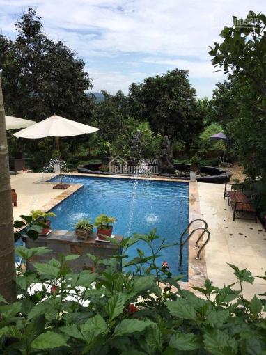 Cần bán đất ở, đất vườn 1910m2 đang kinh doanh homestay tại xã Yên Bài, Ba Vì, Hà Nội