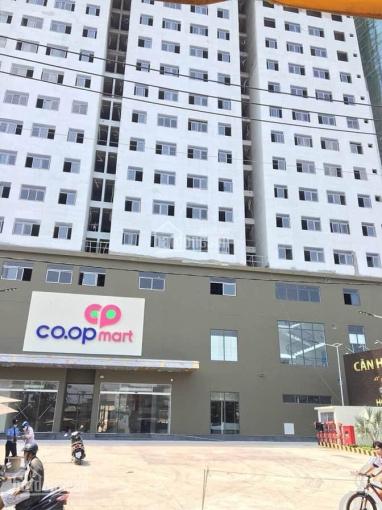 Mừng khai trương Coop Mart, mở bán 59 căn đẹp nhất, 1,3 tỷ, nhà hoàn thiện, hồ bơi, ký HĐ TT 30%