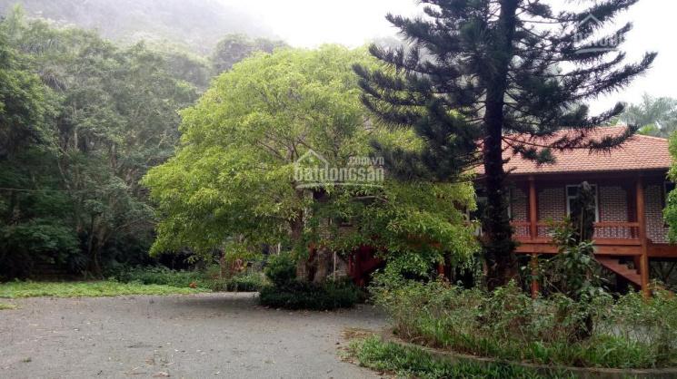 Khuôn viên sinh thái hoàn thiện tuyệt đẹp Lương Sơn Hòa Bình 4500m2 tìm chủ mới, LH: 0979935638