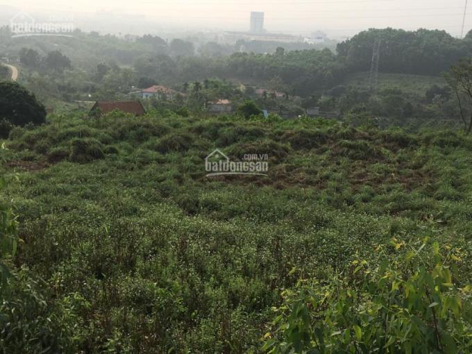 Bán 54 sào đất trang trại đẹp số một tại xã Hòa Sơn, Lương Sơn, Hòa Bình