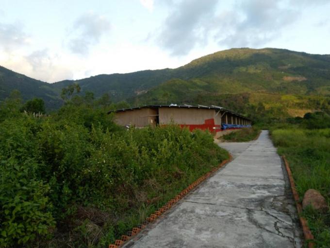 Bán hoặc hợp tác kinh doanh trang trại đang hoạt động DT 5,8 hécta tại Diên Điền, Diên Khánh