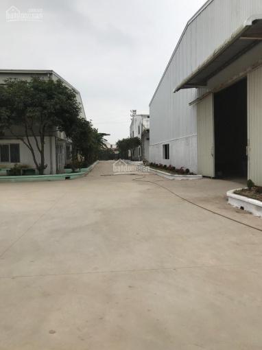 Cho thuê kho nhà xưởng mới 1.700m2 trên diện tích đất 17.000m2 tại cụm CN Thuận Thành, Bắc Ninh