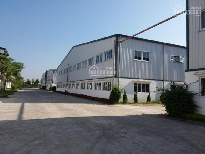 Bán nhà xưởng khu Mỹ Hào, Hưng Yên, DT 10.000m2 đến 1000.000m2