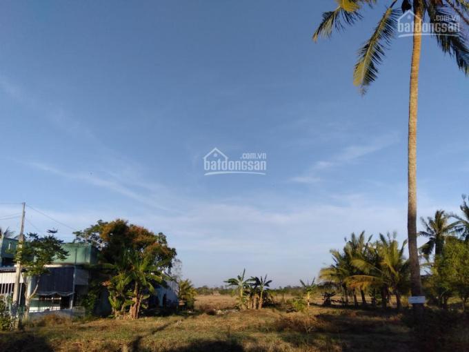 Bán đất vườn xã Lý Văn Lâm, TP Cà Mau
