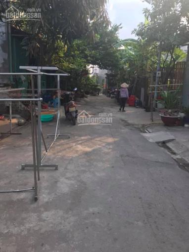 Bán đất Ấp 7, đường Phan Văn Hớn, xã Xuân Thới Thượng, Hóc Môn