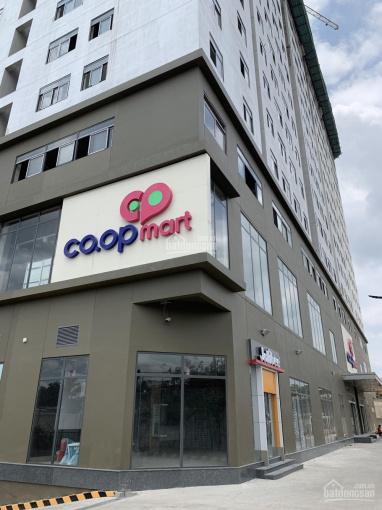 Cơ hội cuối để sở hữu căn hộ có bể bơi khoáng mặn, Coop Mart ngay tại HL2, Q. Bình Tân, 0904209760