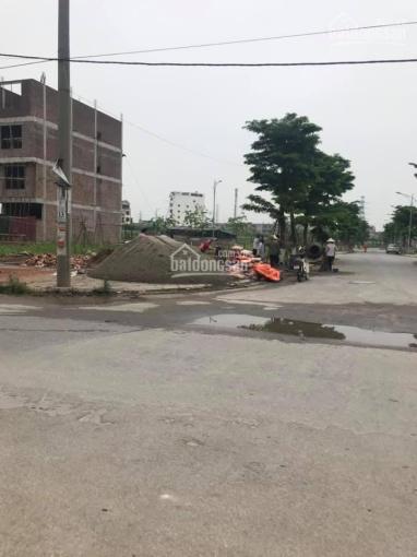 Bán đất đồi cọ lăng phát tích Ninh Hiệp, Gia Lâm, Hà Nội
