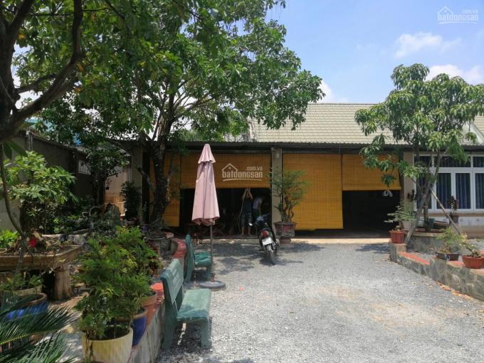 Cho thuê kho xưởng + biệt thự sân vườn. DT 54x26m, đường xe tải, giá 35tr/tháng
