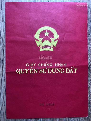 Bán đất nông nghiệp tại xã Lạc Dương (gần ngay TP Đà Lạt), LH 0986519896