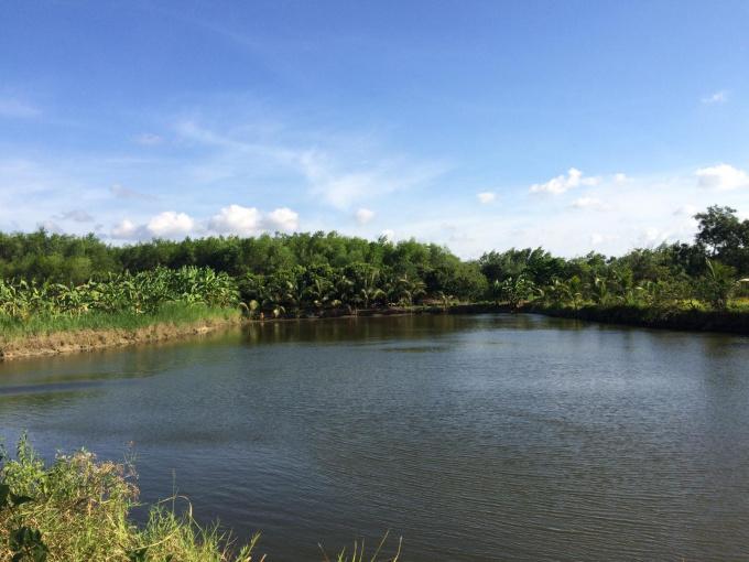 Chính chủ bán trang trại xã Sông Ray, Cẩm Mỹ, Đồng Nai