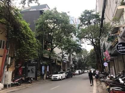 Bán nhà riêng, mặt phố Bùi Thị Xuân, Quận HBT, HN, cách Vincom 80m