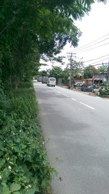 Cần bán đất đường Thanh Niên, xã Phạm Văn Hai, huyện Bình Chánh