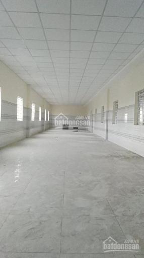 Cho thuê kho xưởng đường Nguyễn Hữu Trí, xã Tân Bửu, Bến Lức, Long An. LH: Chú Tuấn quản lý kho