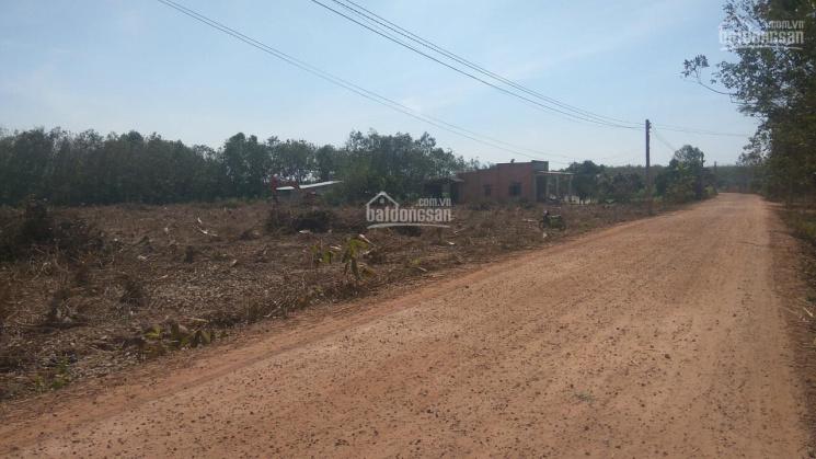 Đất Tây Ninh giá 410 triệu, cách đường ĐT 200m ảnh 0