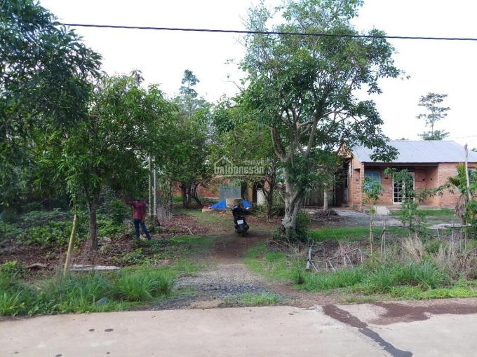 Bán 19000m2 (1,9 mẫu) đất tại xã Xuân Đông, H. Cẩm Mỹ, Đồng Nai, giá 350 tr/sào, LH: 0935605866