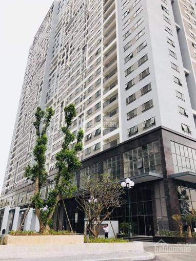 Cho thuê kiot 52m2 đã hoàn thiện chung cư 43 Phạm Văn Đồng, làm siêu thị, cafe, hiệu thuốc, spa