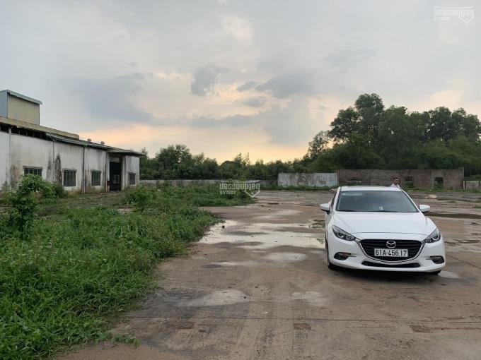 Bán đất mặt tiền đường Trần Ngọc Lên, 12.260m2, thổ 500m2, phường Định Hòa, TP Thủ Dầu Một, BD ảnh 0