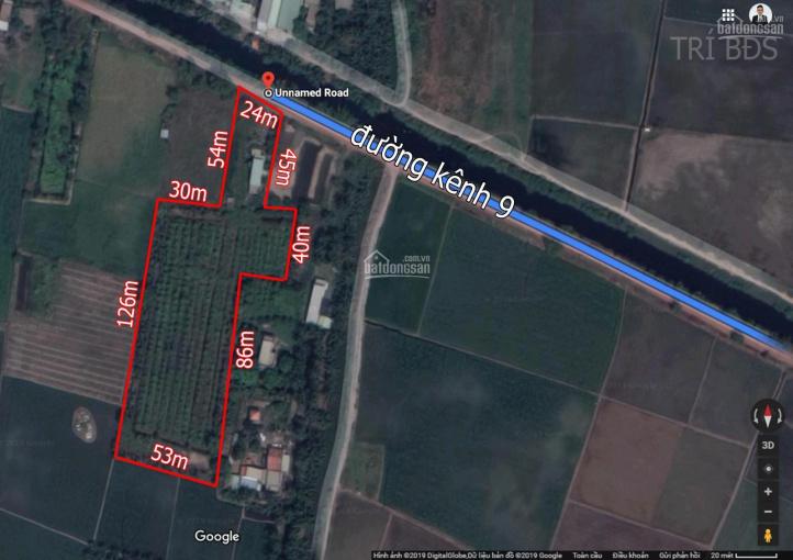 Trí BĐS, đất 8.750m2 mặt tiền Kênh 9 gần, đất đẹp, có nhà, đã lên líp trồng cây, ao nước, giá tốt