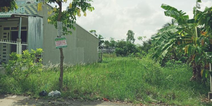 Loa loa - Bán đất mặt tiền đường Đông Bình Đông Thạnh (DH54, ở đầu đường) xã Đông Bình TX Bình Minh