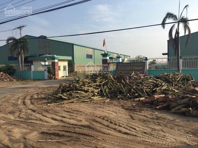Bán nhà xưởng trong diện tích 5ha tại Gò Dầu, Tây Ninh