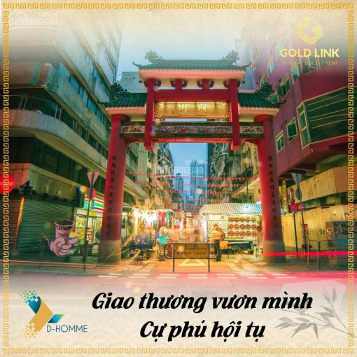Ưu tiên chọn căn đẹp tại dự án D-Homme Quận 6, phố Hoa Kiều trên cao đầu tiên tại Sài Gòn