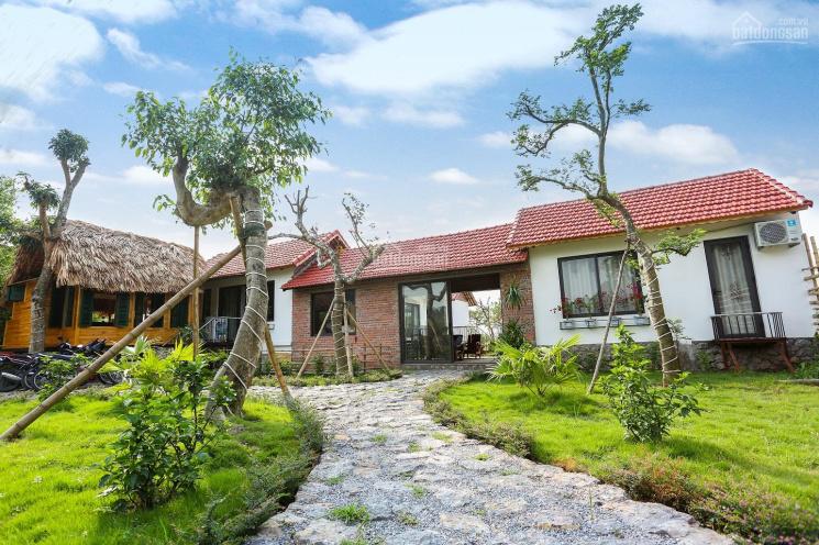 Cần bán homestay Tràng An, Ninh Bình 1800m2, giá 15 tỷ. LH: 0986 350 181 ảnh 0
