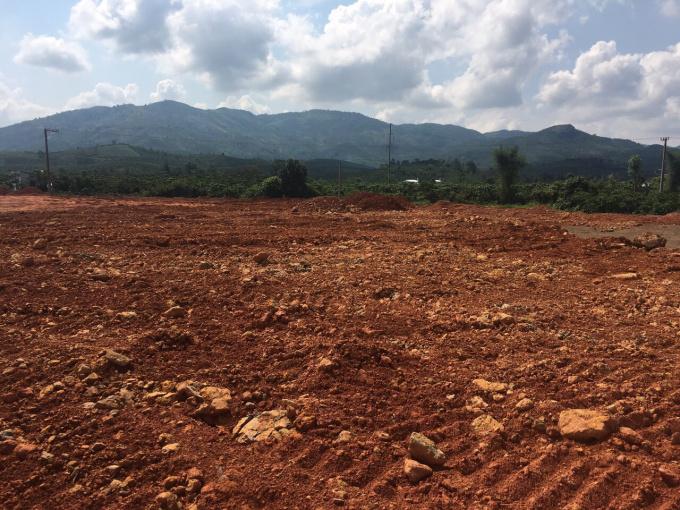 Bán đất đường Đinh Công Tráng, Thành phố Bảo Lộc Lâm Đồng - LH: 0907464215
