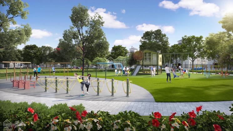 Chính chủ bán liền kề Ngọc Trai 6 view vườn hoa, diện tích 70,8m2 dự án Vinhomes Ocean Park