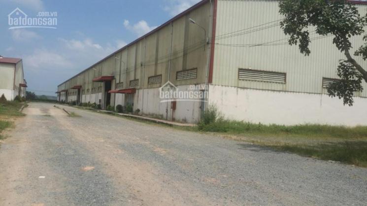 Bán nhà xưởng 71300,4m2, KCN Phước Đông, Gò Dầu, Tây Ninh