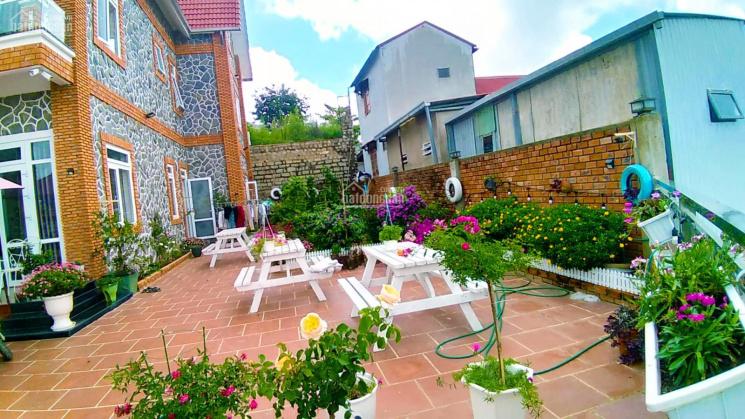 Villa Homestay 450m2 cực đẹp, 10 phòng căn hộ kinh doanh. Hẻm ô tô 7 chỗ