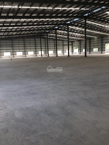 Cho thuê xưởng 5000 m2 Bến Cát, Bình Dương
